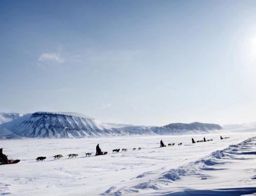 Arctic Team Challenge